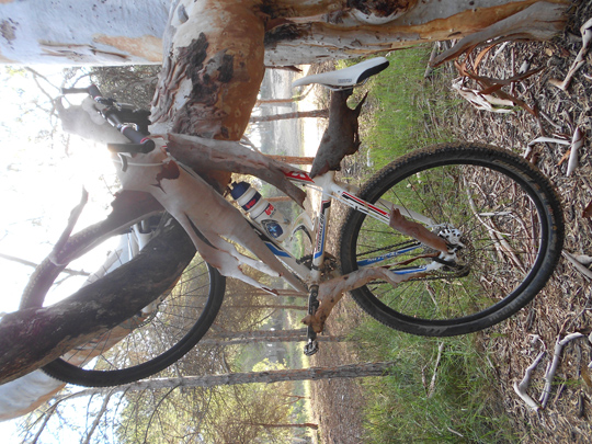vtt 02 bikers